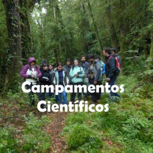 Campamentos Científicos