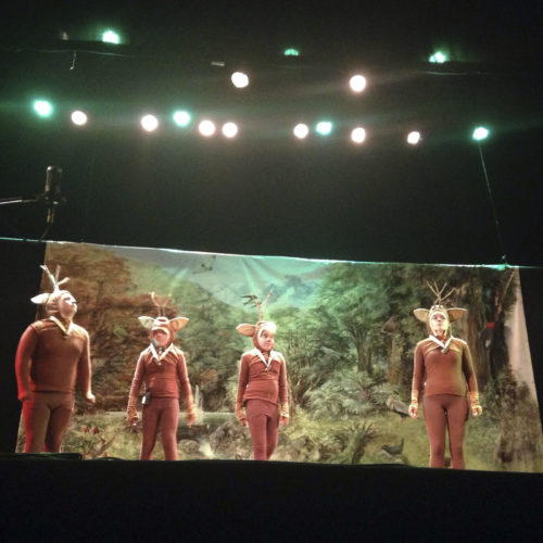 """Comunicado Exitoso estreno en Valdivia del musical """"Siguiendo la huella del huemul"""" (3)"""