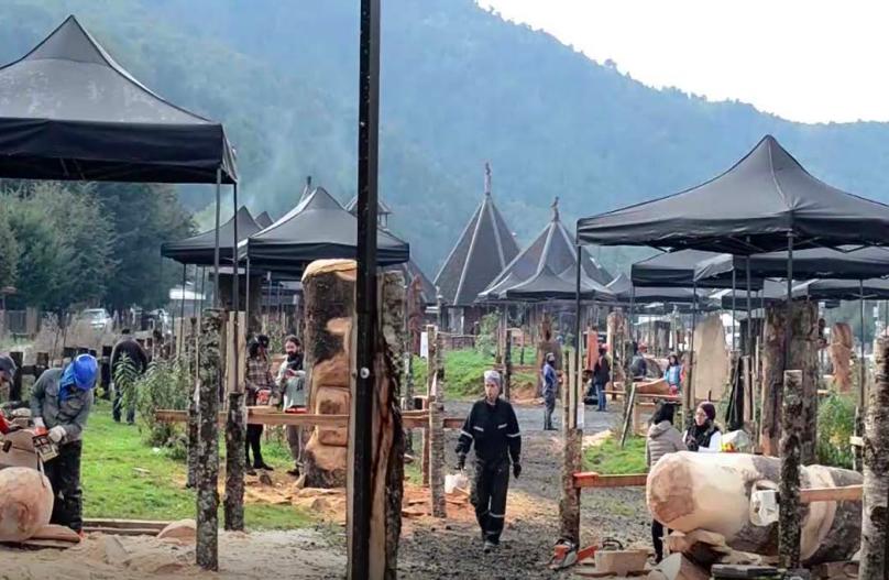 Reserva Biológica Huilo Huilo lanza Concurso de Escultura en Madera