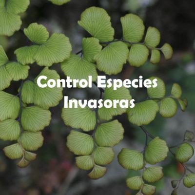 Control Especies Invasoras