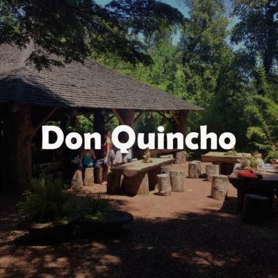 Don Quincho 1