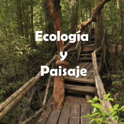 Ecología y Paisaje