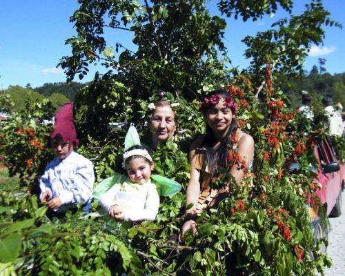 Festival del Bosque 327