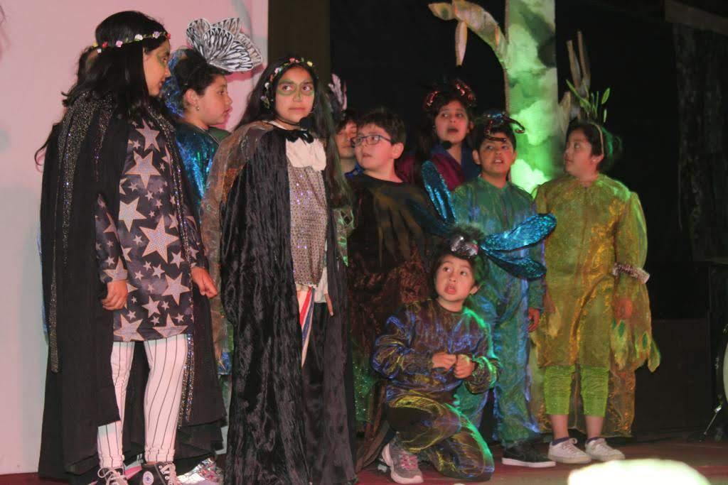 IX versión del Festival del Bosque