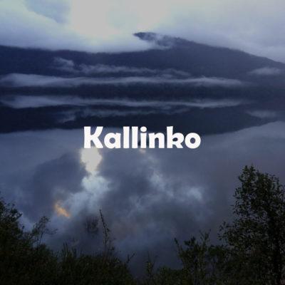 Kallinko3
