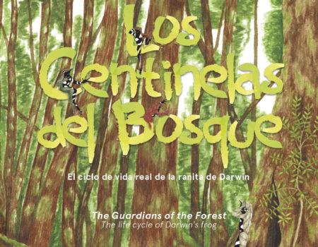 LIBRO CENTINELAS DEL BOSQUE-1