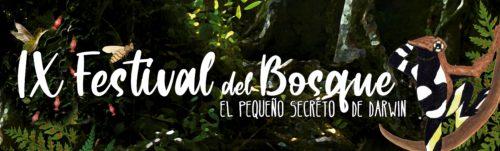 ¡Festival del Bosque 2019!
