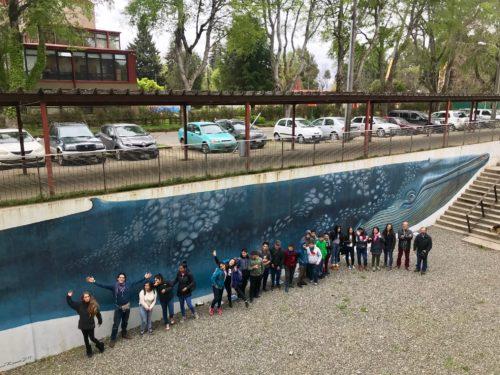MAC Valdivia y Fundación Huilo Huilo iniciaron la tercera versión de talleres artísticos para estudiantes de Neltume