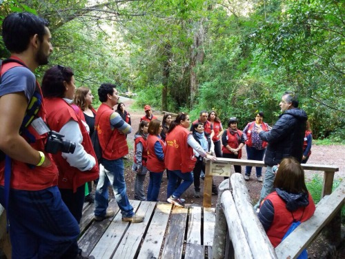 Profesores de la provincia de Osorno conocieron los proyectos de conservación que realiza Fundación Huilo Huilo.