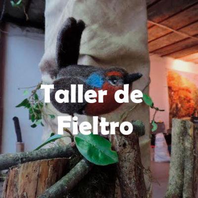 Taller de Fieltro
