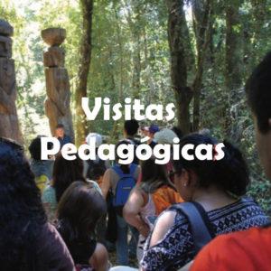 Visitas Pedagógicas