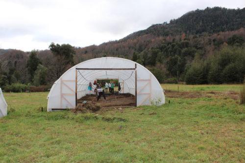 Estudiantes de la Universidad de Duke, EEUU, realizan voluntariado en Fundación Huilo Huilo