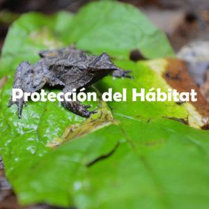 Protección del Hábitad