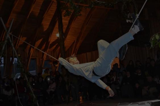 huilo-huilo-arte-fondo-trapecista